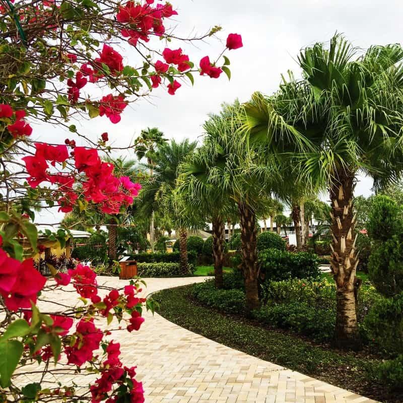 orlando wyndham resort