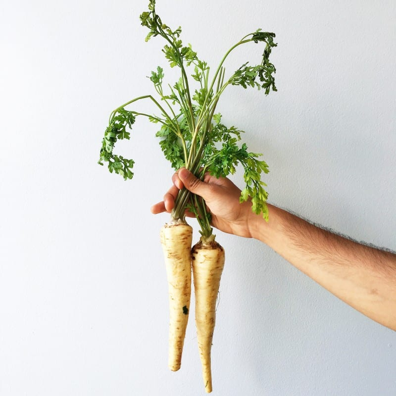 Parsley Root