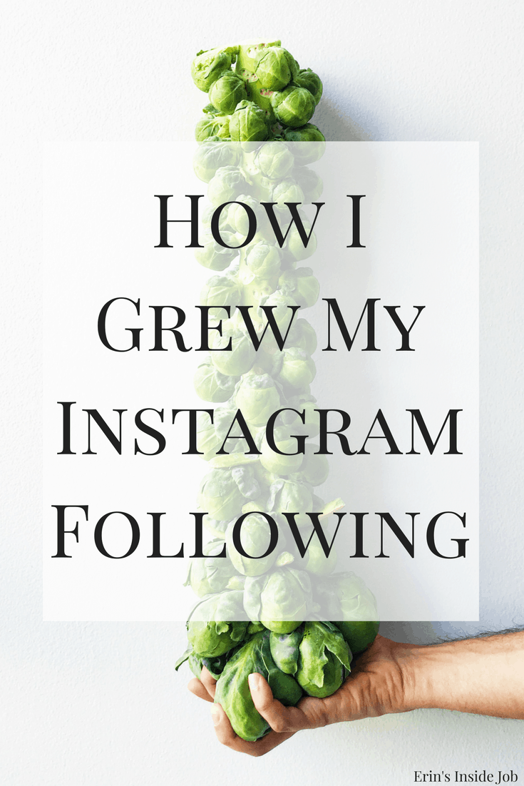 How I Grew My Instagram Following