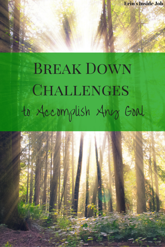 Break Down Challenges To Accomplish Any Goal