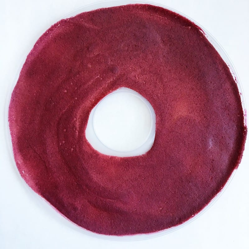 Dehydrated Fruit Leather