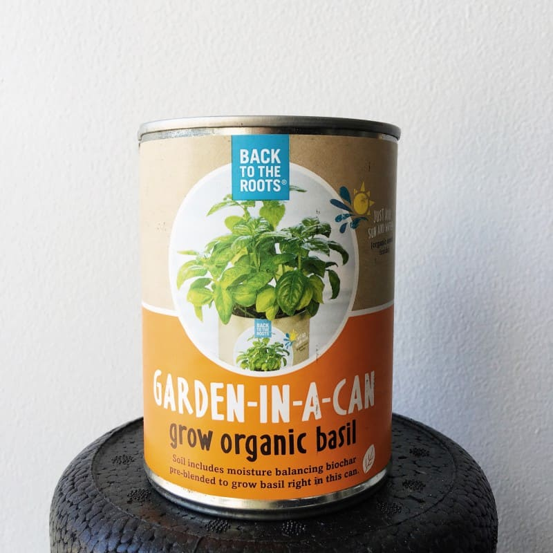 Basil in a Can