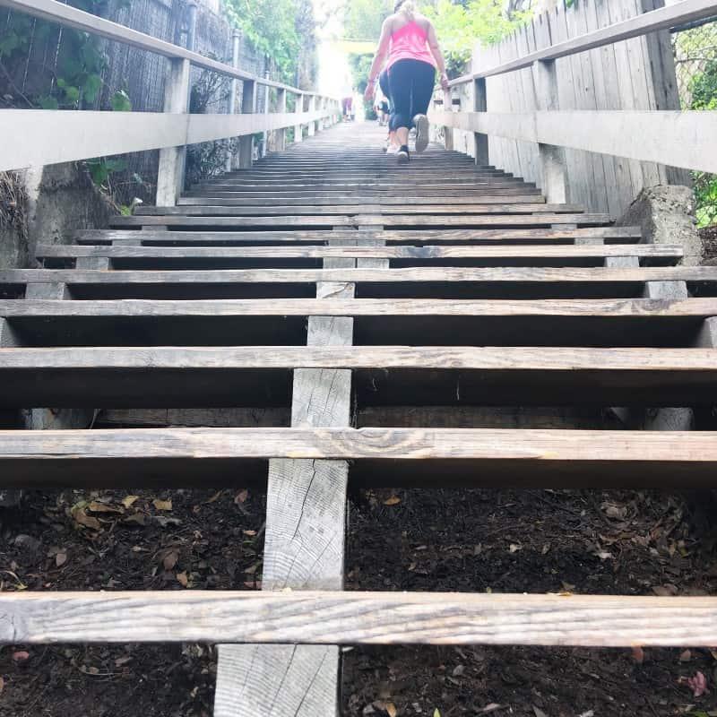 Santa Monica Stairs  2