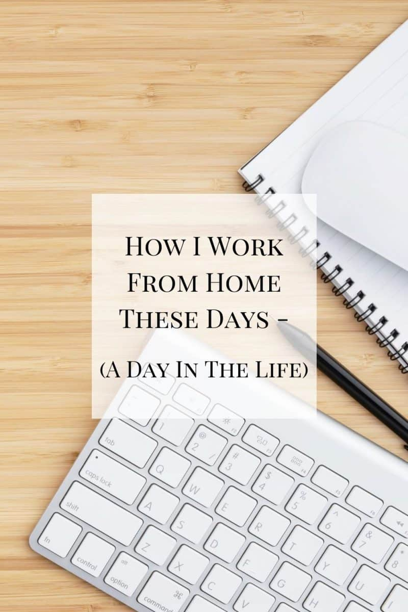 A look at how I work from home these days - a newborn, a toddler, a dog, and a husband all in the same house. Here's a day in the life.